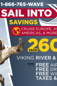 Email Banner - Viking 3